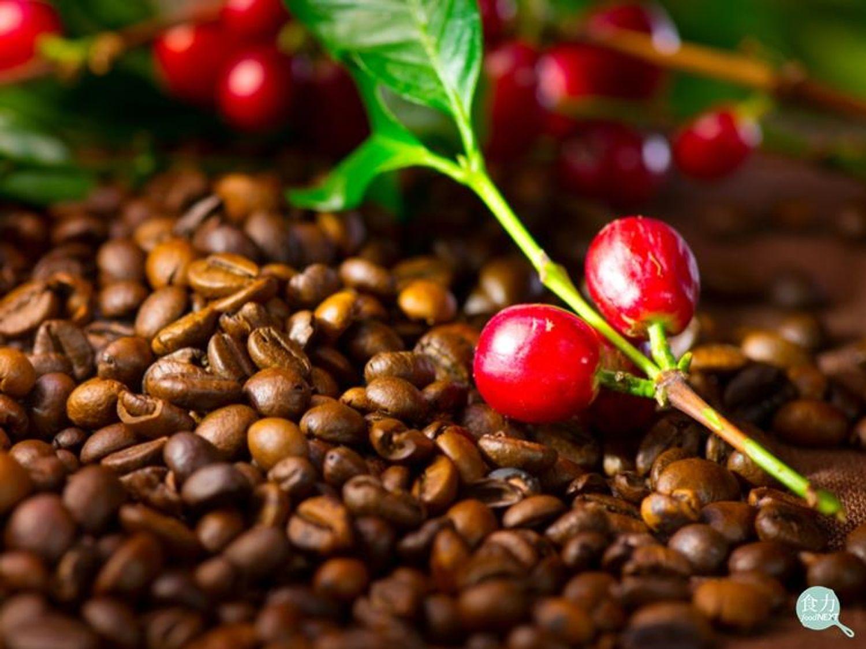 波皮斯國際樂活養生網 - 微量烘培咖啡豆