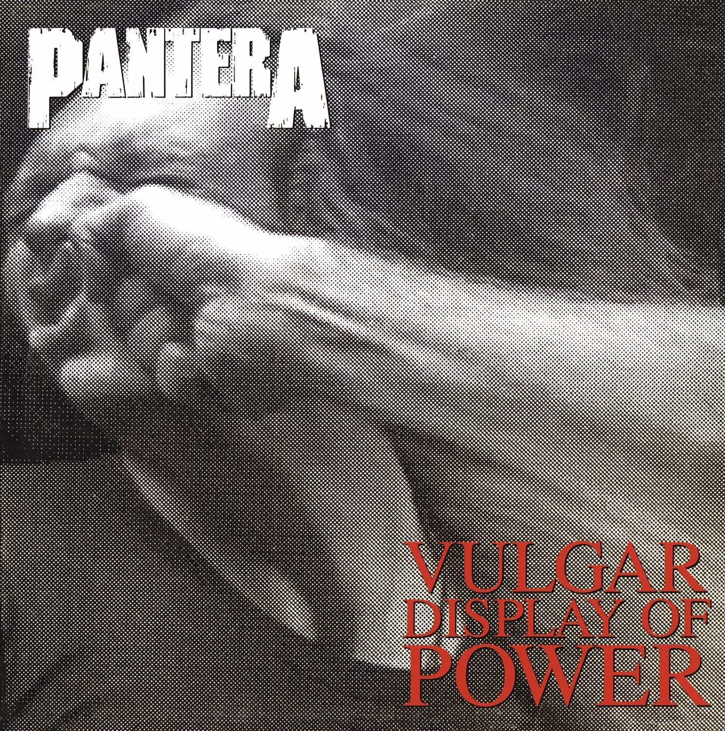 PANTERA Vulgar Display of Power 2LP.jpg