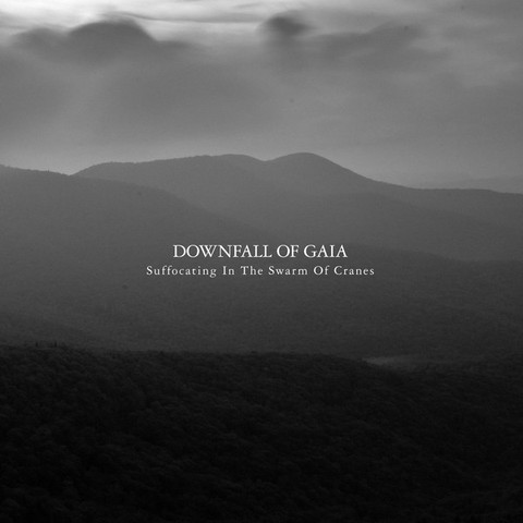DOWNFALL OF GAIA Suffocating In The Swarm Of Cranes CD.jpg