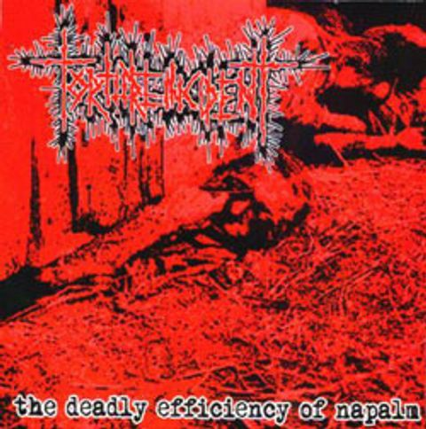 (Used) TORTURE INCIDENT The Deadly Efficiency Of Napalm CD.jpg