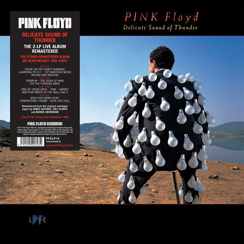 PINK FLOYD Delicate Sound of Thunder 2LP.jpg