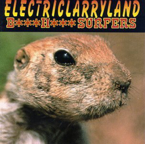 BUTTHOLE SURFERS Electriclarryland CD.jpg