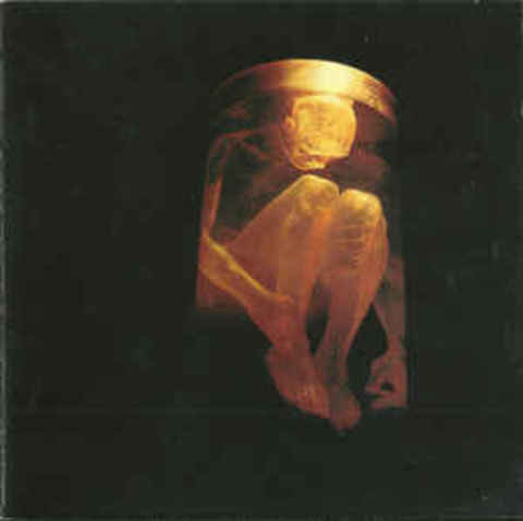 ALICE IN CHAINS Nothing Safe The Best Of The Box CD.jpg