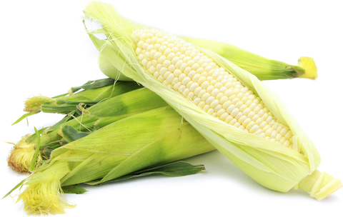 White_Maize_1024x1024.png