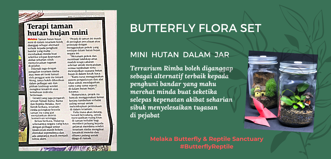Butterfly Flora Set.png