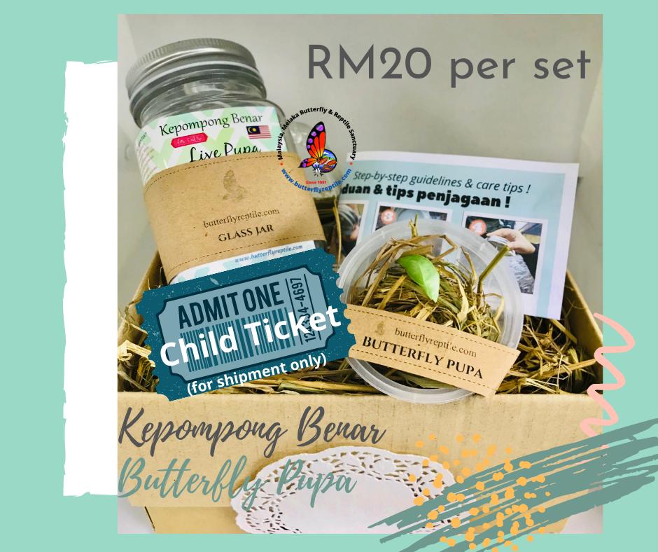 Pupa Set RM20.png