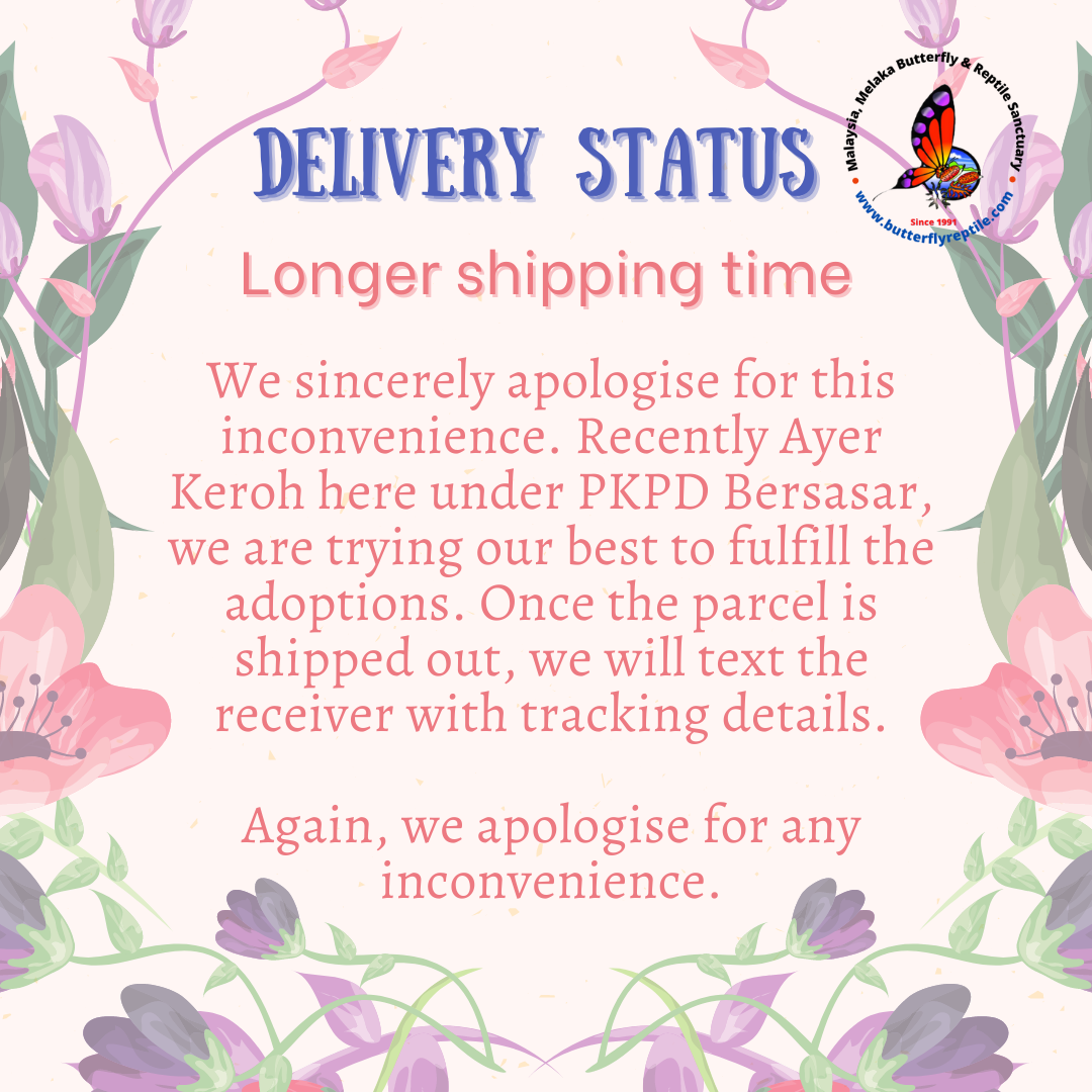 Delivery status Delay PKPD Bersasar.png