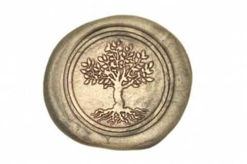 DSC_0067_tree_life_1024x1024.jpg