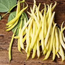 2016-Garden-celery-Seeds-Vegetables-15g-bag-Thailand-small-celery-home-garden-Plant-seeds.jpg