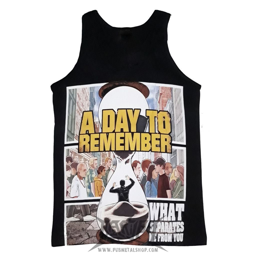 A day to remember-what separates.jpg
