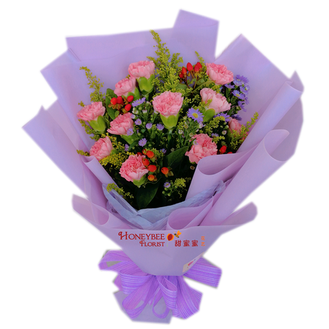 Mothers-Day-Carnation.png