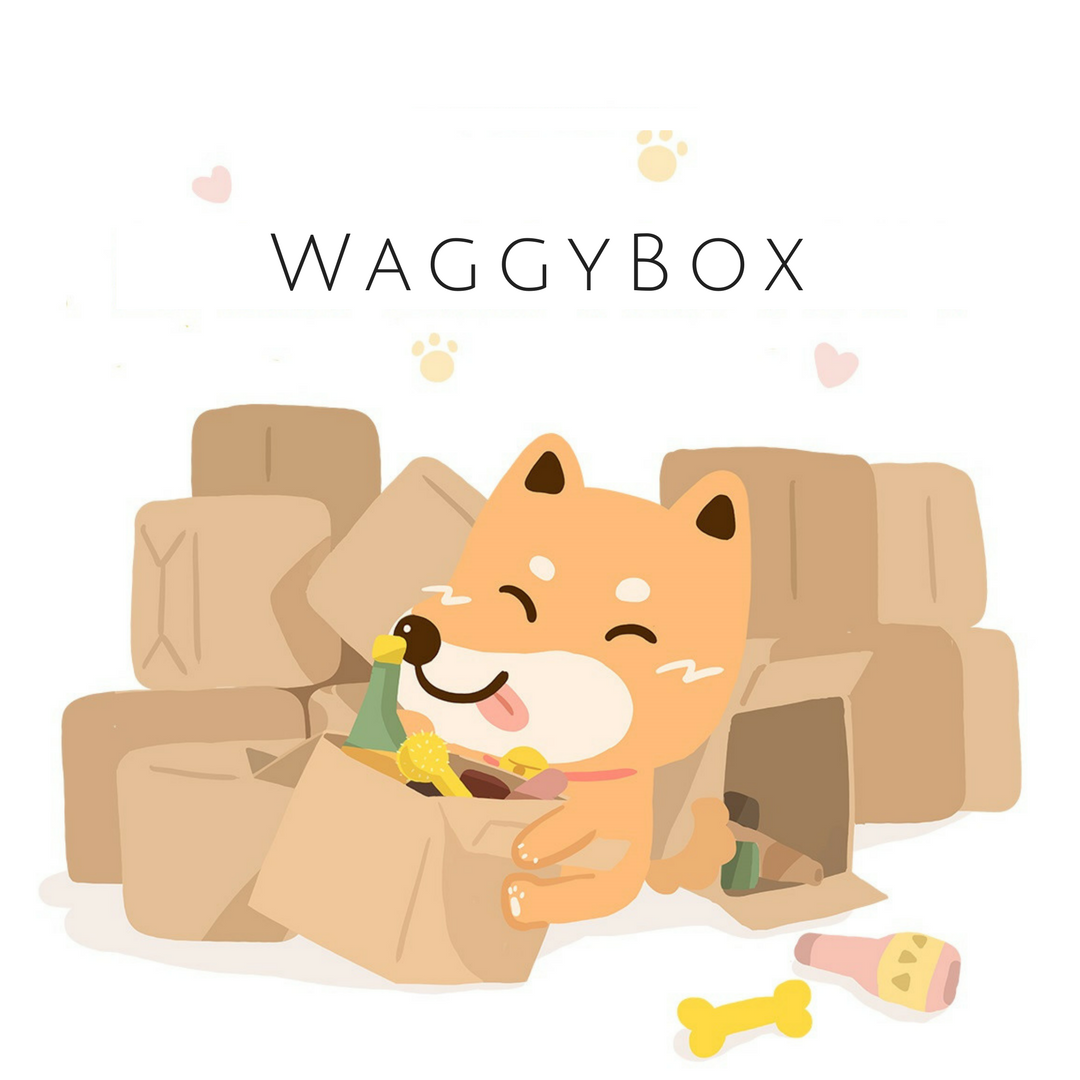 May 2018 WaggyBox Subscription