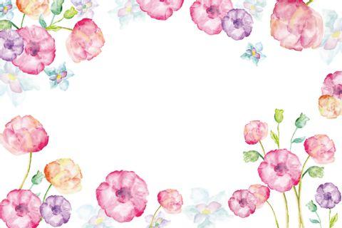 D8-白底水彩花卉.jpg