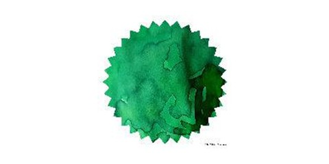 Ever Green 02.JPG
