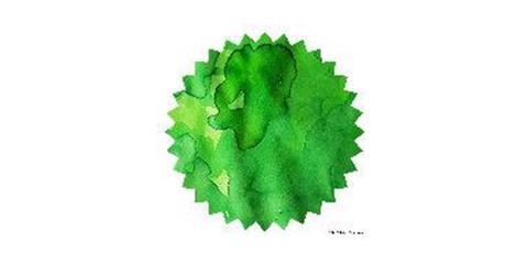 Green Green 02.JPG