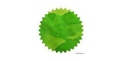 Green Lime 02.JPG