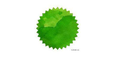 Ryde Green 02.JPG