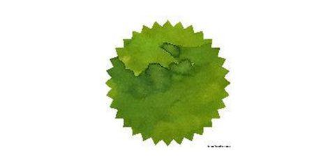 Verde de Rio 02.JPG
