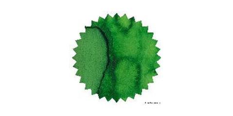Vine Leaf 02.JPG