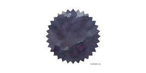 Purple Jazz.JPG