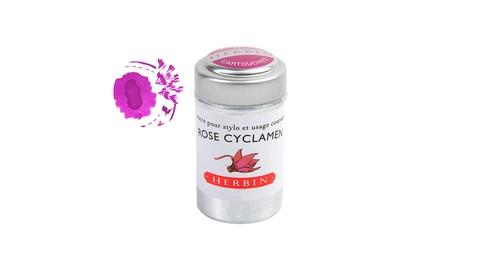 20166T 仙克來粉 Rose cyclamen (2).JPG