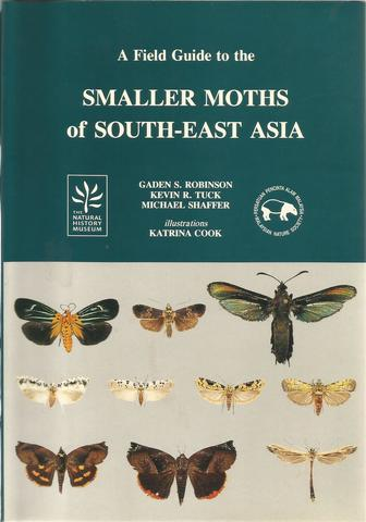 smaller moths of SEA.jpg