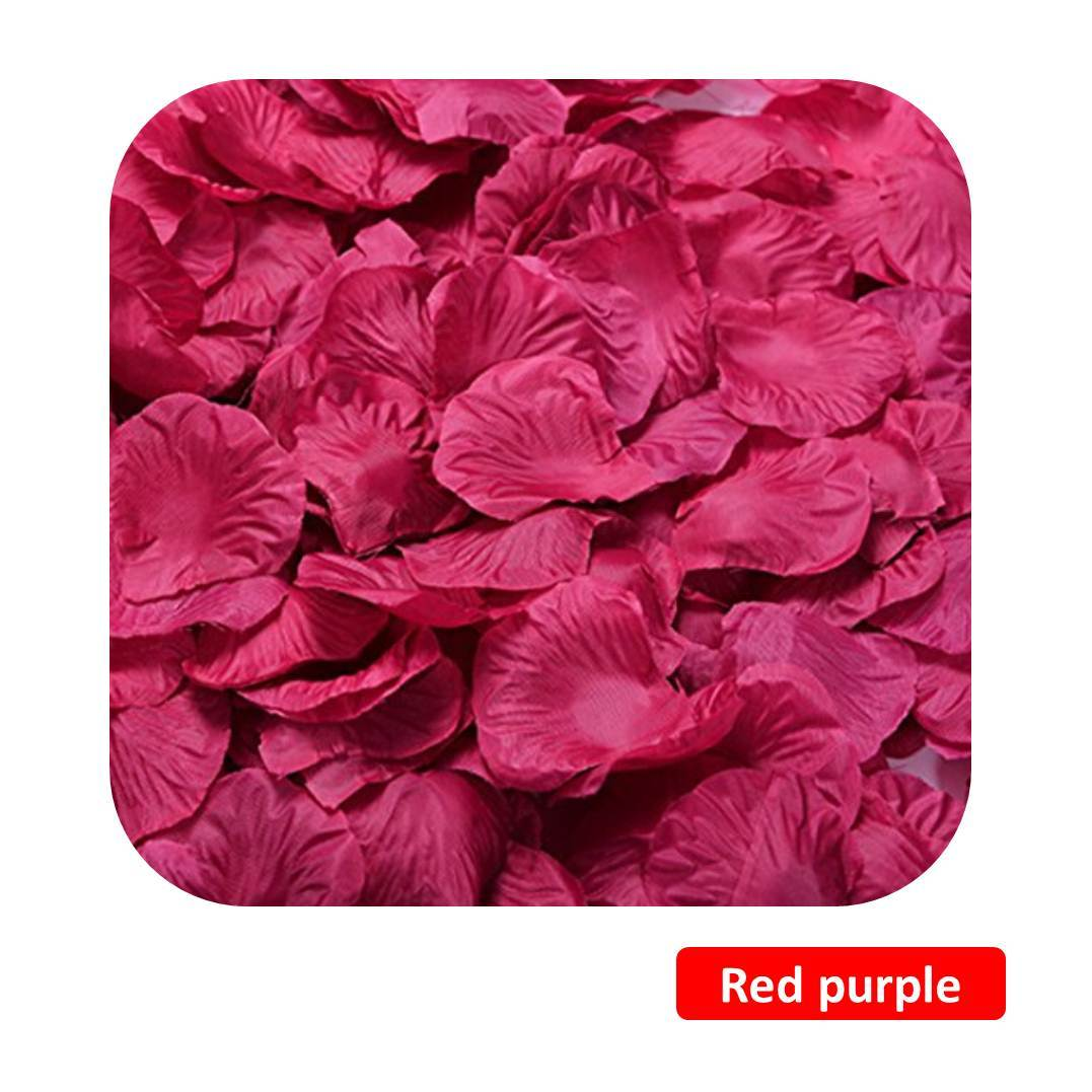 Purple - Red.jpg