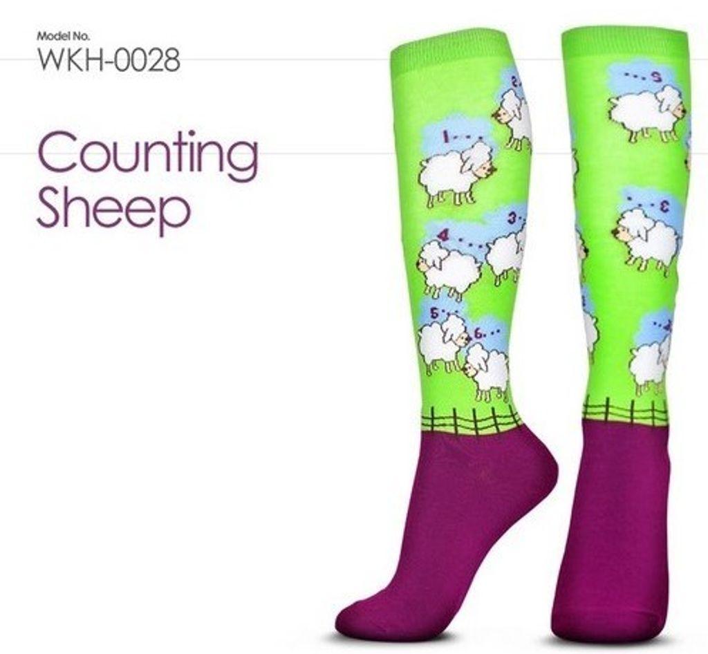 數羊一.jpg