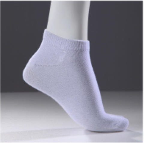 SCI HP318 Ankle Sock (White) 2.png