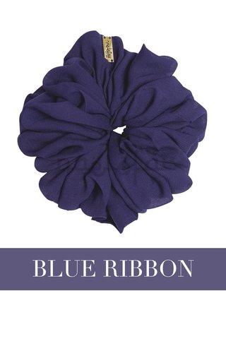 Scrunchy_-_Blue_Ribbon_1024x1024.jpg