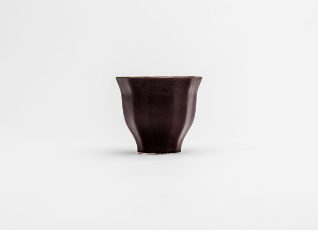 TW-POL-cup-02111.jpg