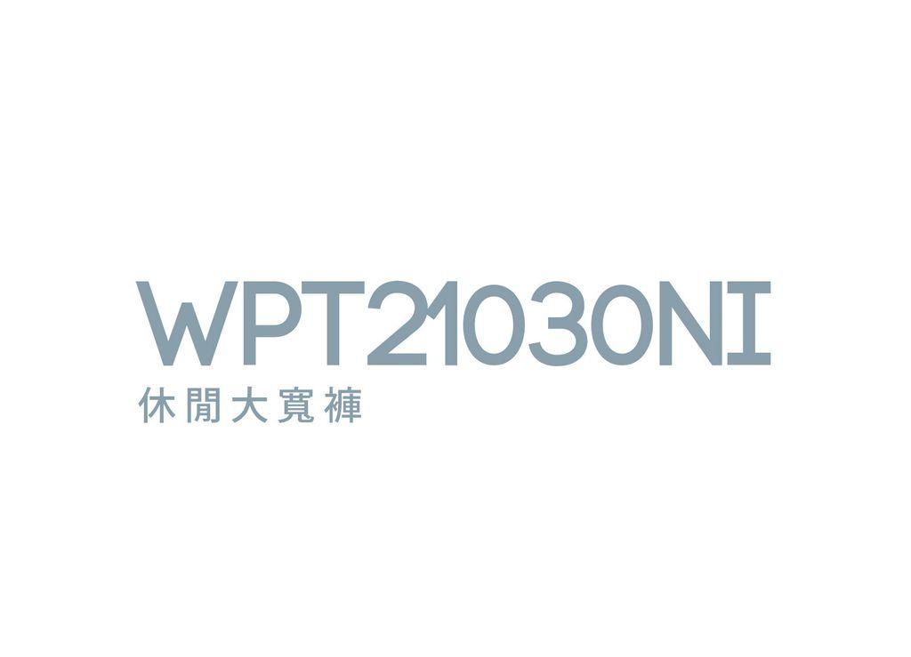 WPT21030NI_工作區域 1.jpg