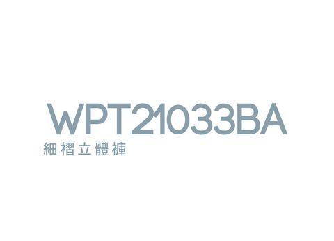 WPT21033Ba.jpg