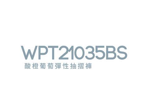 WPT21035BS_工作區域 1.jpg