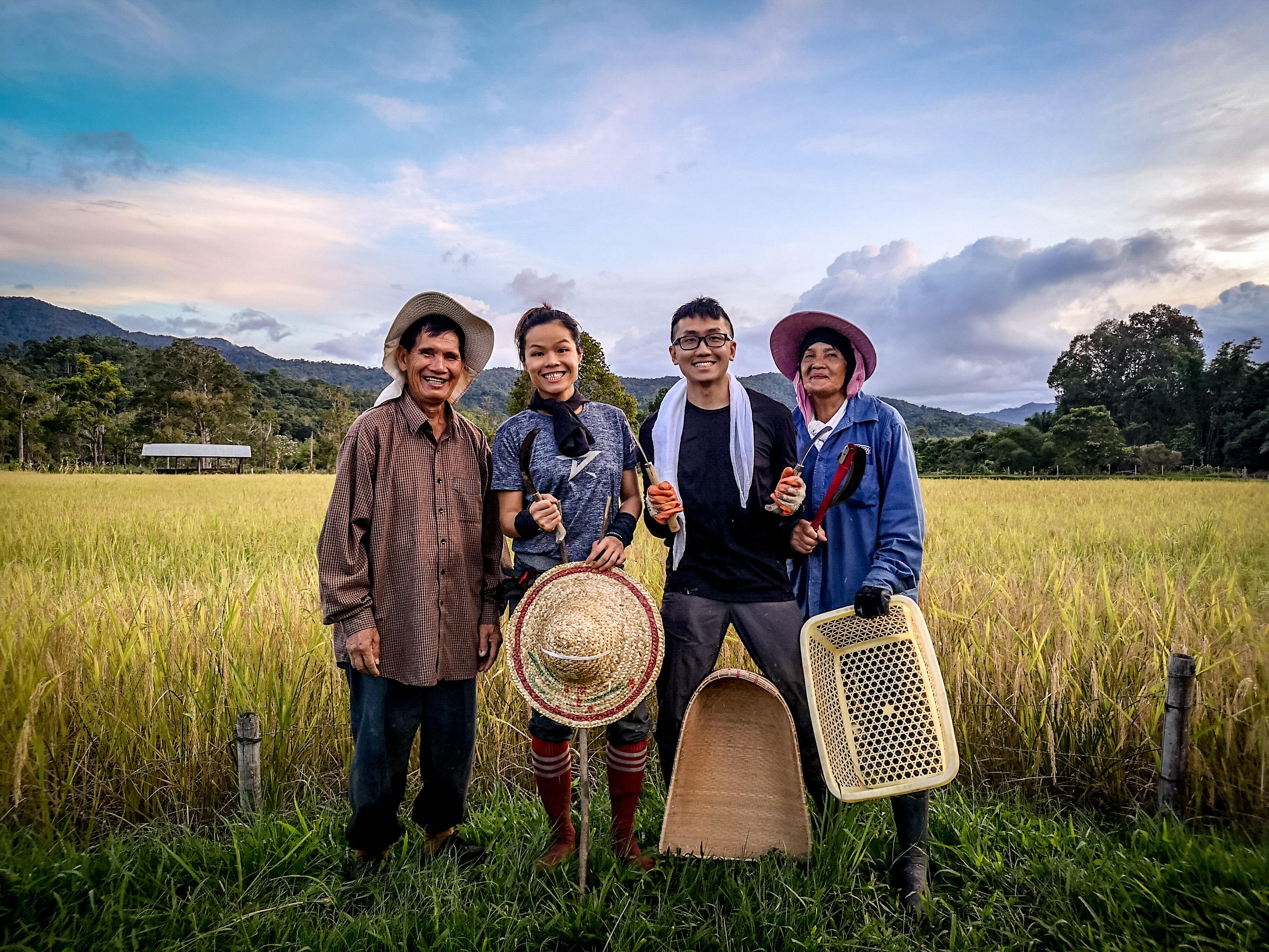 langit-rice-harvest-2020-2.jpg