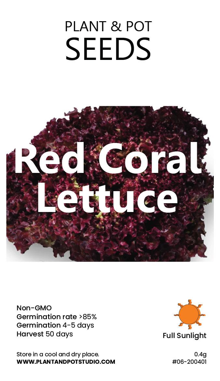 Red Coral Lettuce.jpg