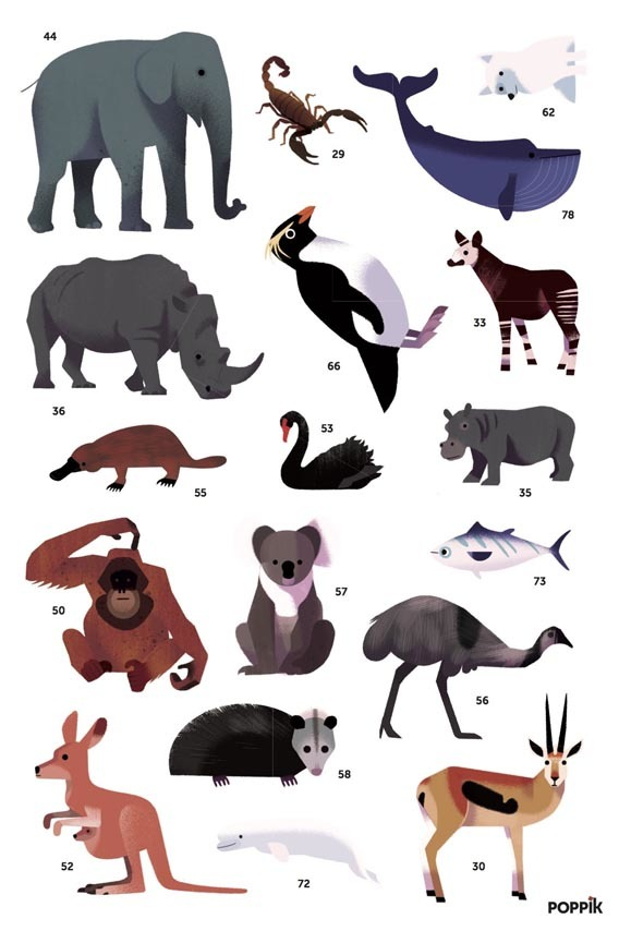 poppik stickers animals poster worldmap carte monde.jpg