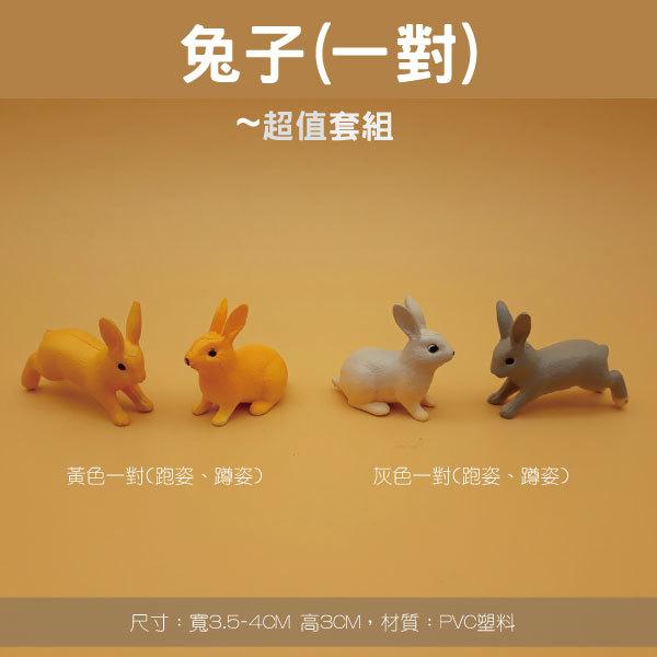 兔子一對.jpg