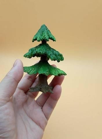 松塔樹-1.jpg