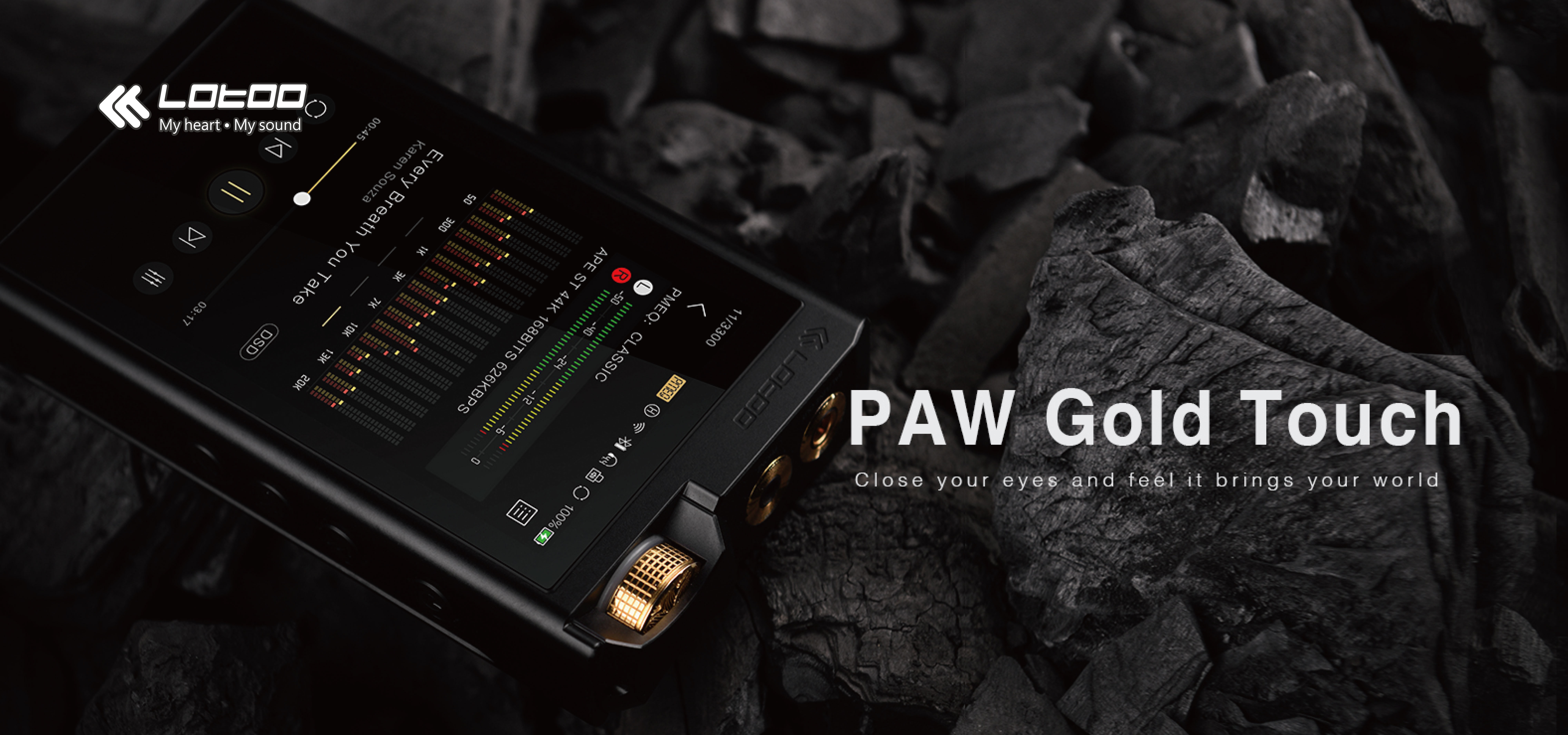 #lotoo #pawgoldtouch #dsd #touch