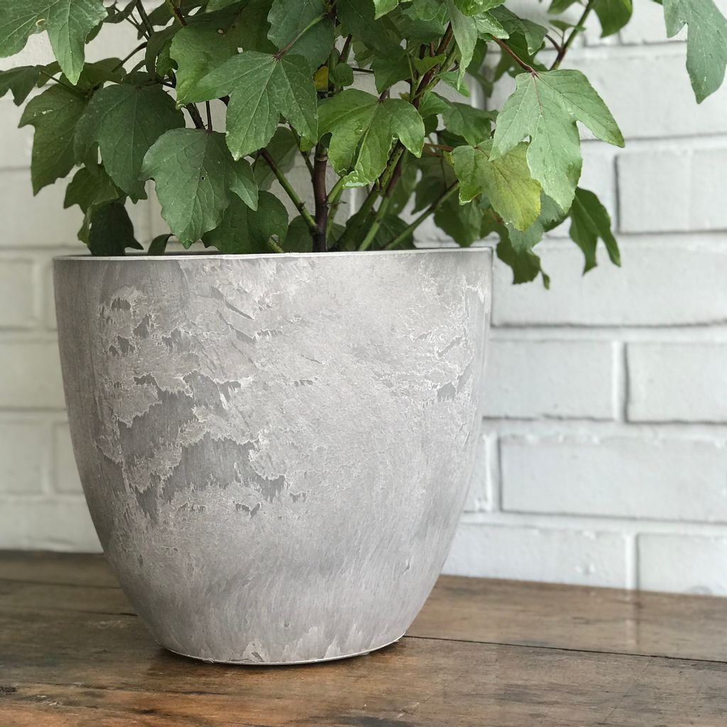 Pots - Silver M with Plants 3718.jpg