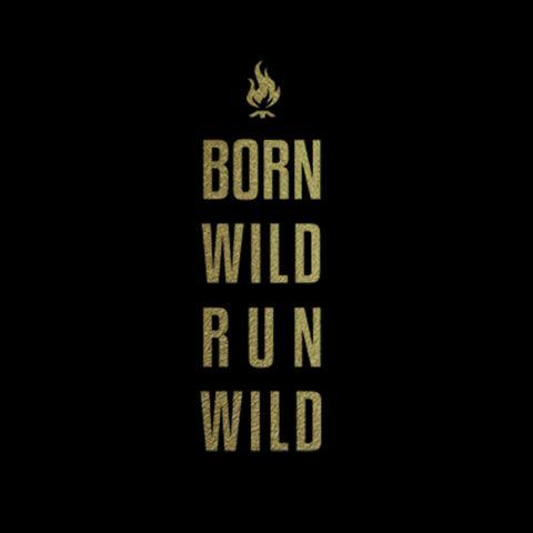 Borm Wild Run Wild 1.jpg