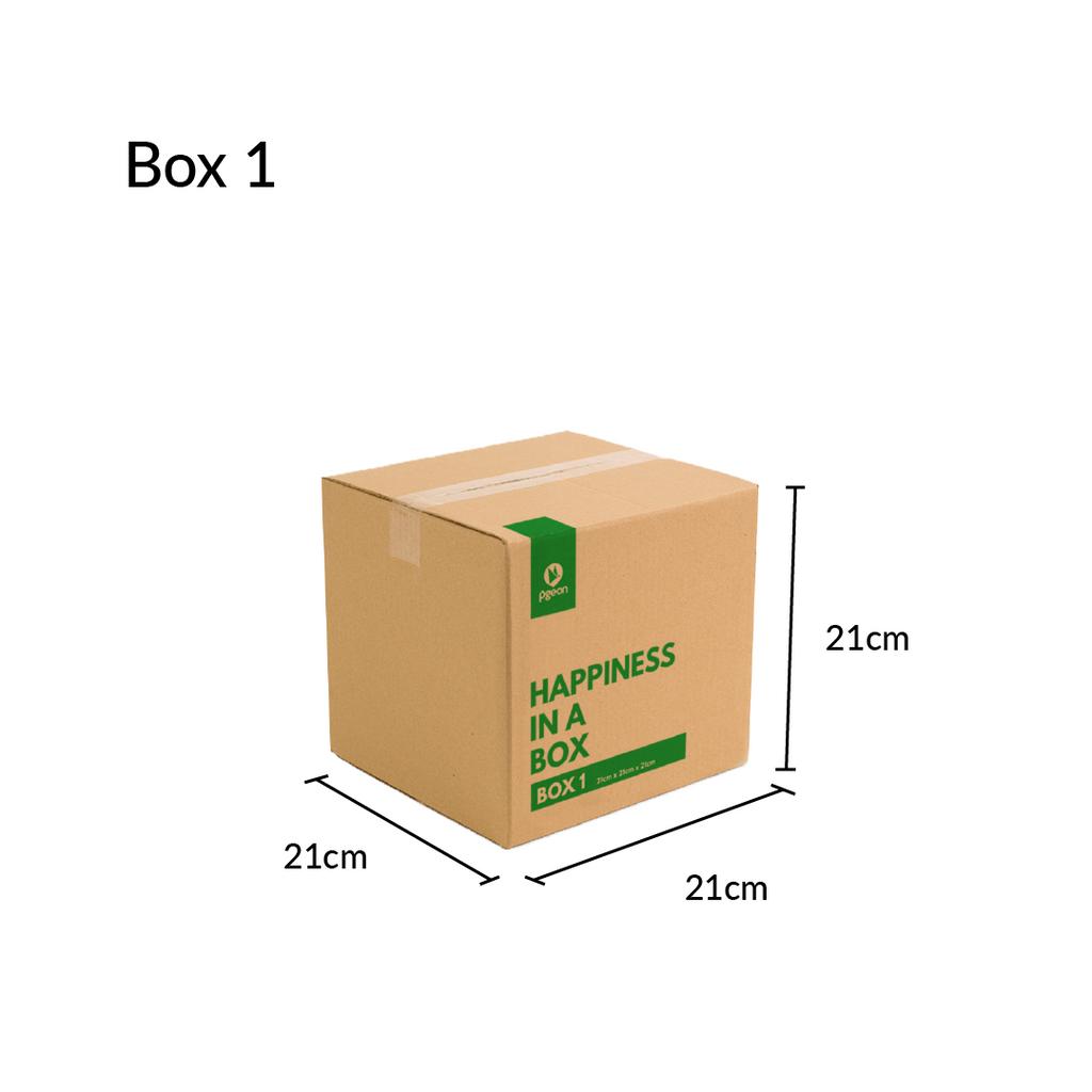 1080x1080 - Pgeon box 1 (measurement).png