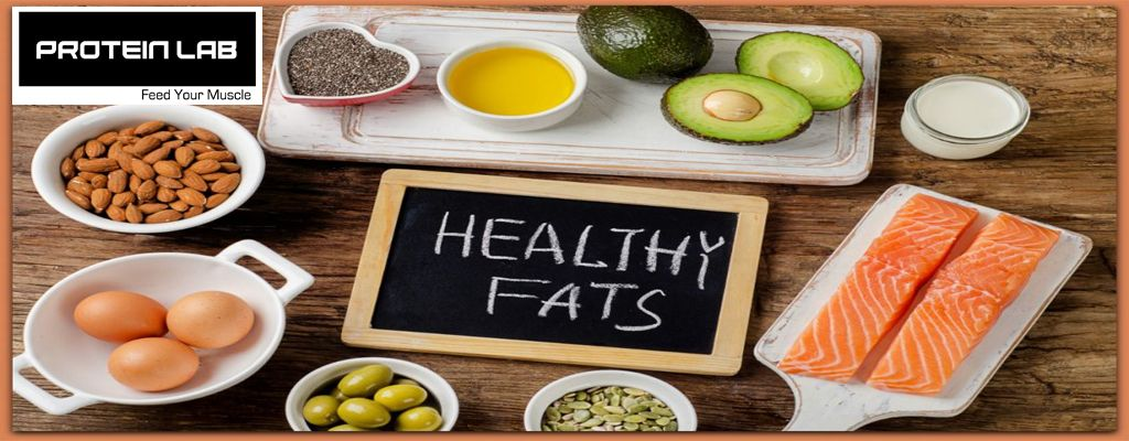 The different types of Fats