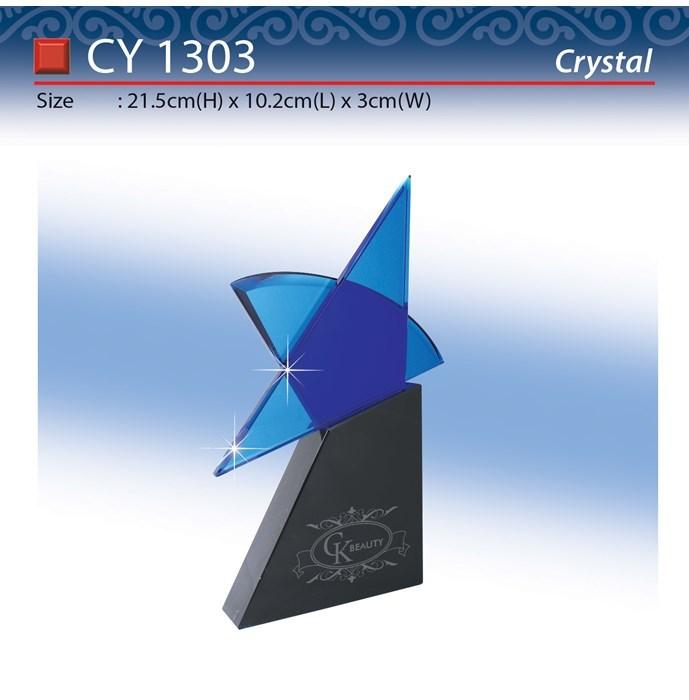 CY-1303.jpg