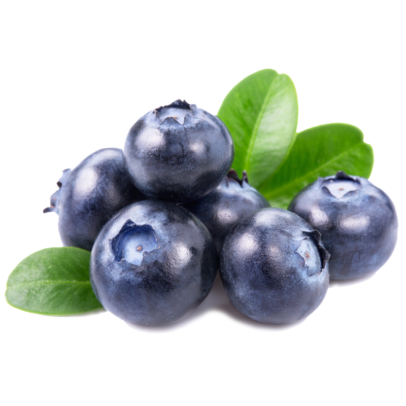 090818-BLUEBERRY-Product.png