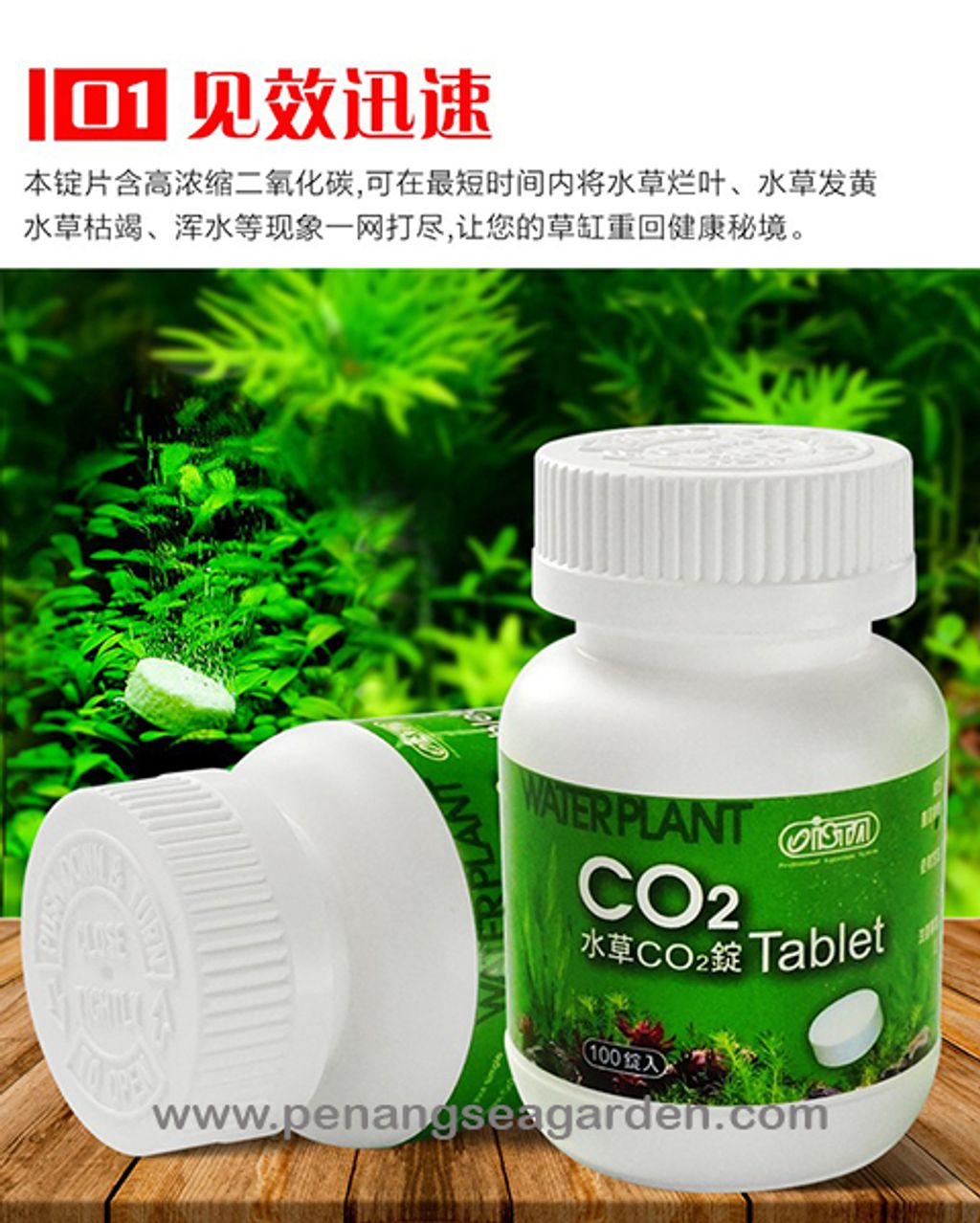 ISTA Water Plant CO2 水草 (100 Tablet) RM23-7.1w.jpg