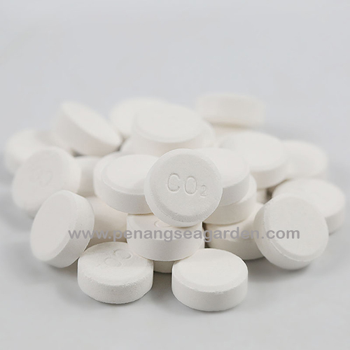 ISTA Water Plant CO2 水草 (100 Tablet) RM23-8w.jpg