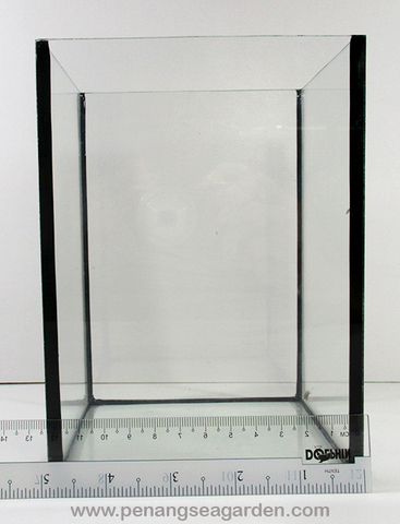 Betta Glass Tank - 3w.jpg