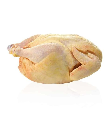 Old Chicken
